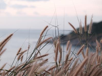 Slow Life : Définition et application du mouvement qui veut vous faire ralentir